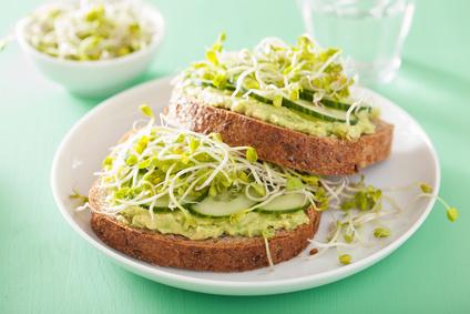 Veganer Brotaufstrich mit Avocado