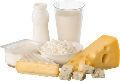 Molkereiprodukte: Milch und Käse